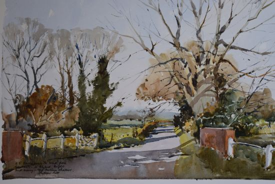 Autumn Trees - Wenhaston