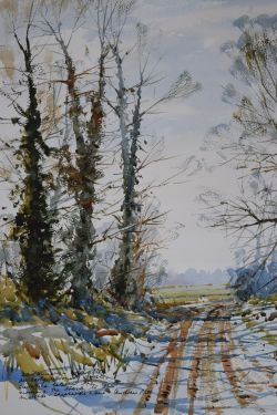 A frosty morning - Shepherd's Lane